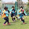 【アルバイト】仙台市内近郊サッカーコーチ&運営スタッフ募集中!